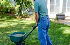 Spreading WOW Lawn Treatment